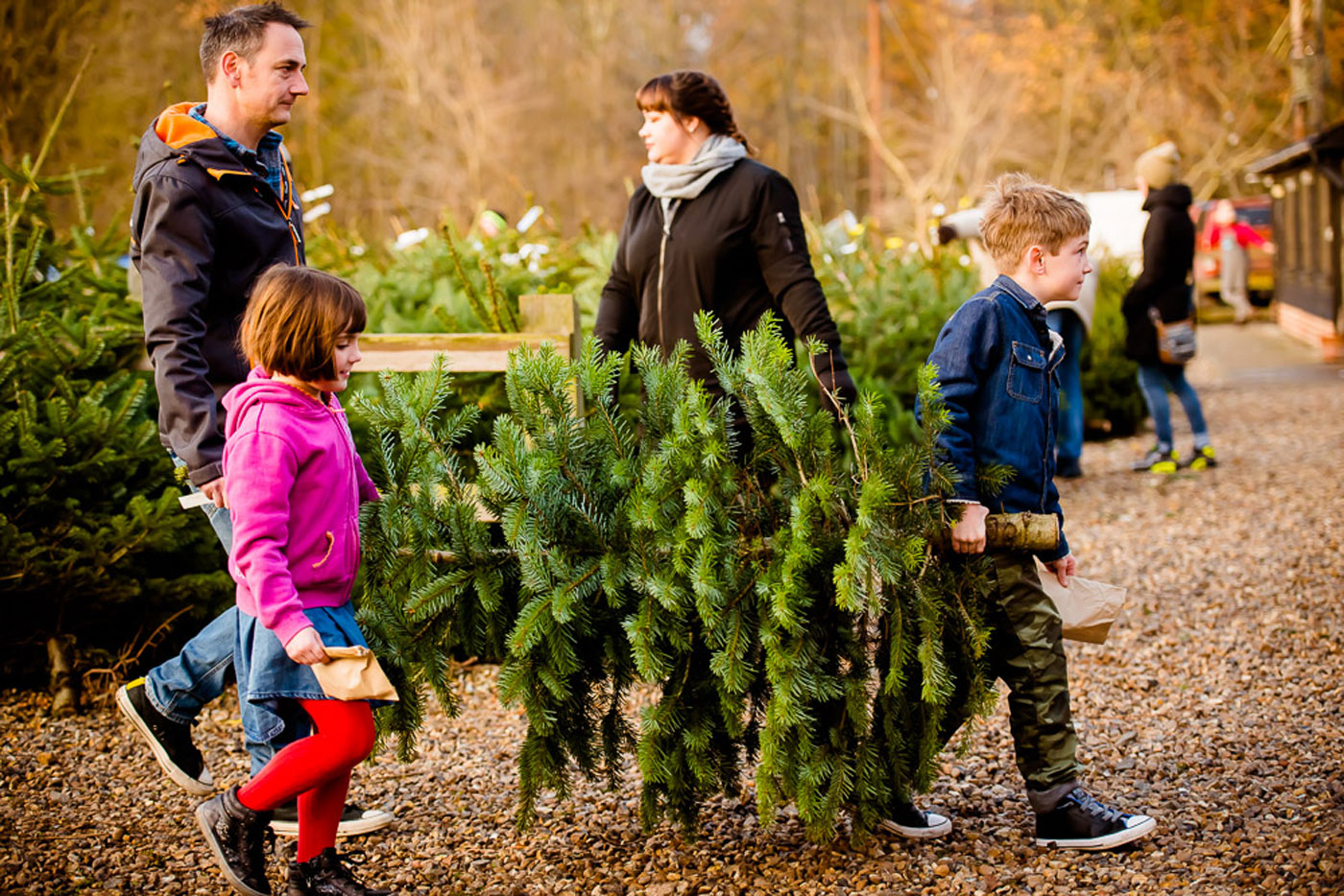 Family purchasing a lush Christmas tree