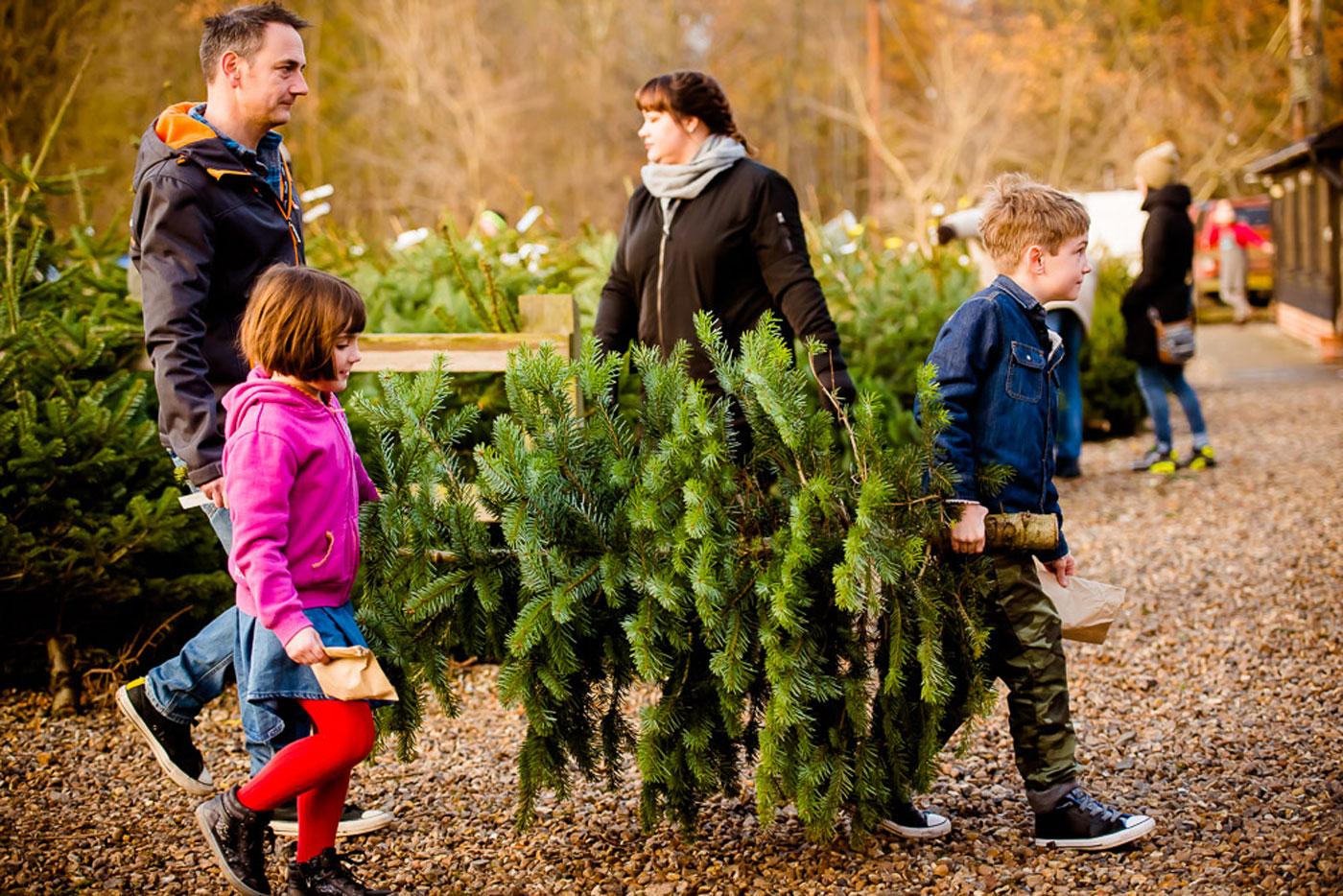 Family purchasing a lush Christmas tree